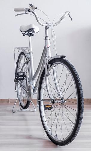 rower_wintage_color12.jpg