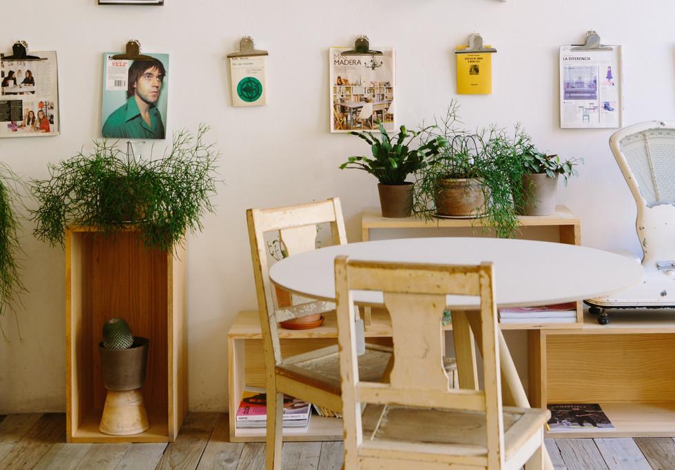 Mudha Inspira: plantas na decoração