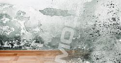 slider-mold