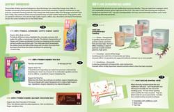 Eco Schools / Mailer / Interior 2