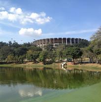 2013 Confederations Cup - Belo Horizonte