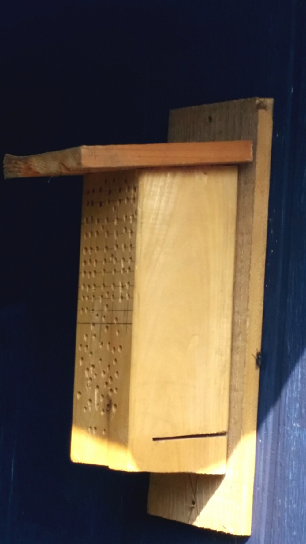 Saturday temperatures broke into the 70s and with that, my hubby was inspired to finish up his latest project of creating a mason bee house out of scrap wood and putting it up on the back of our garage to attract more pollinators.