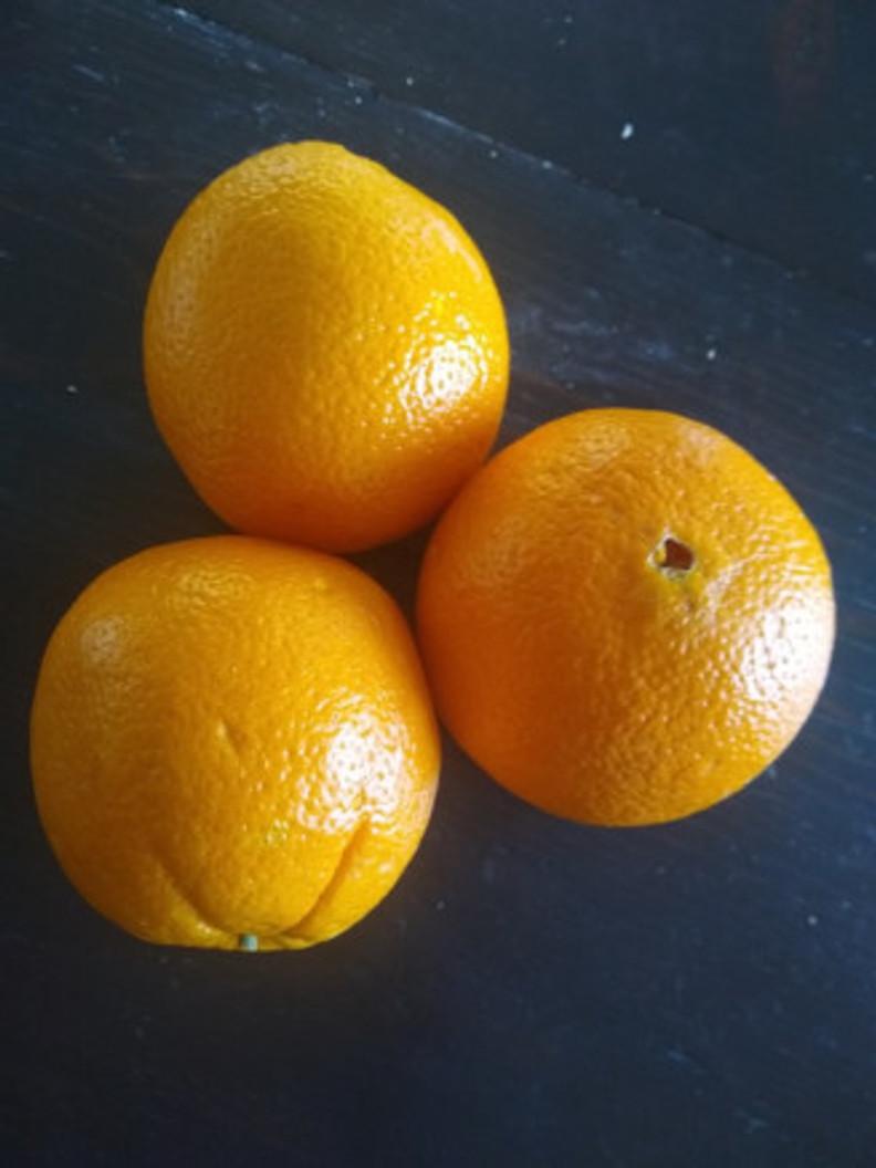 blog-oranges
