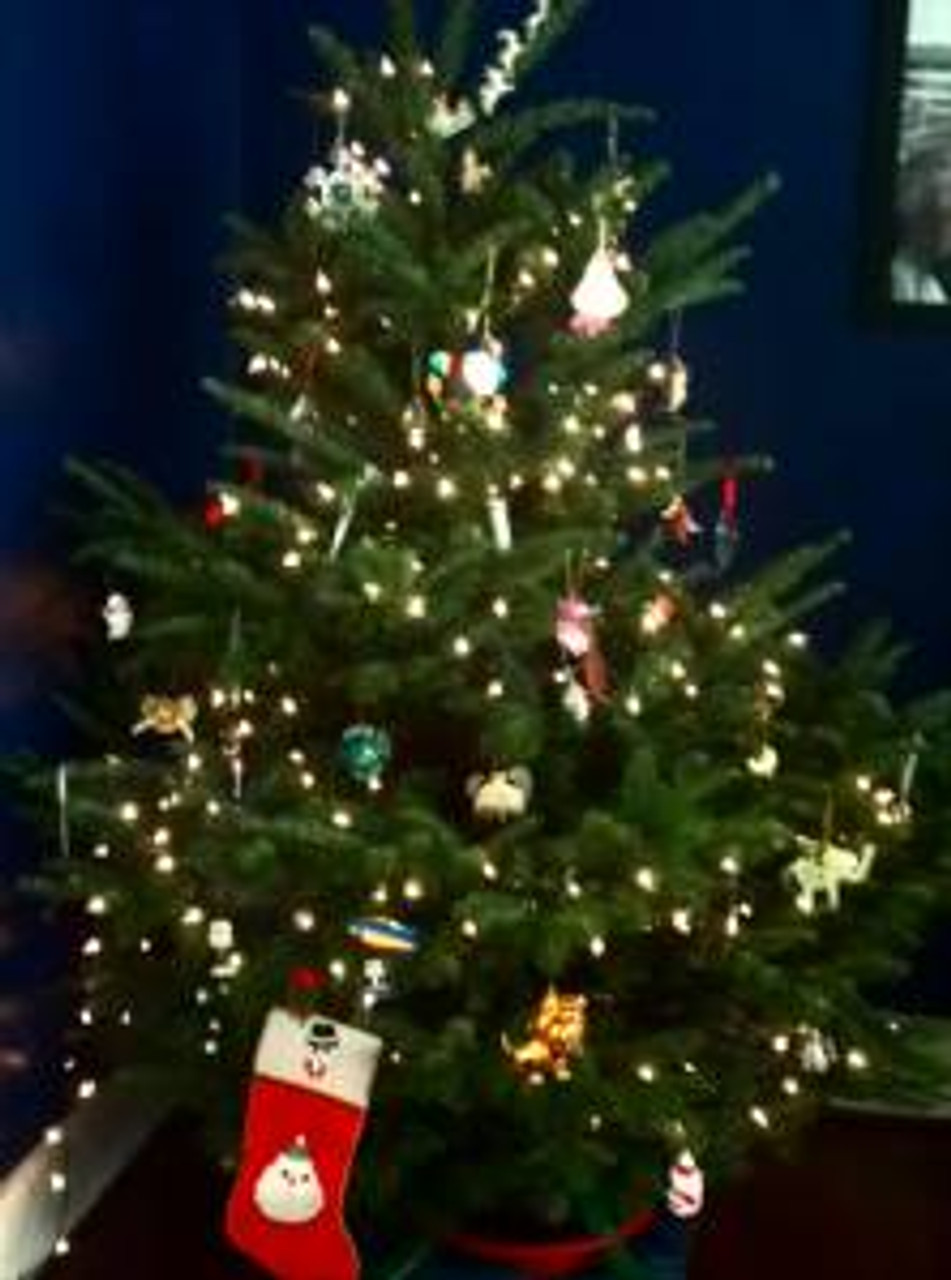 after tweaking my back on Sunday morning, convinced the tree dude to saw it down for me and i have my very own noble fir in my living room.  not that i'll get anything in my stocking, but who knows, this grrrl could use a good surprise...