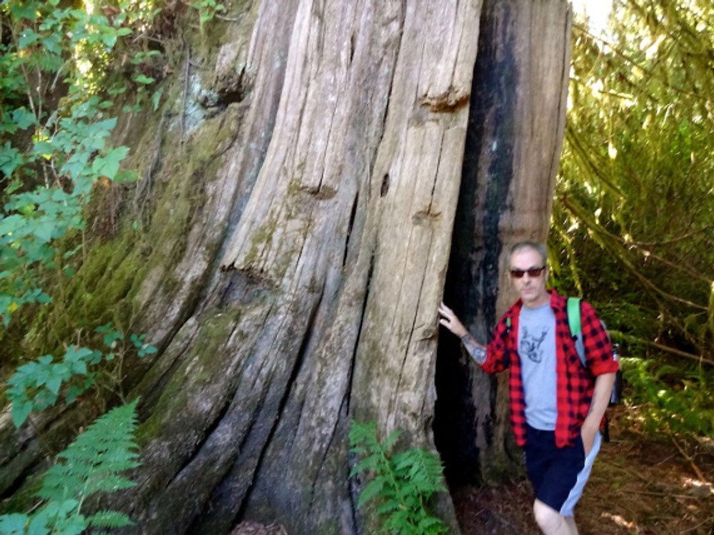 Dude, this is a tree trunk. We were in awe.