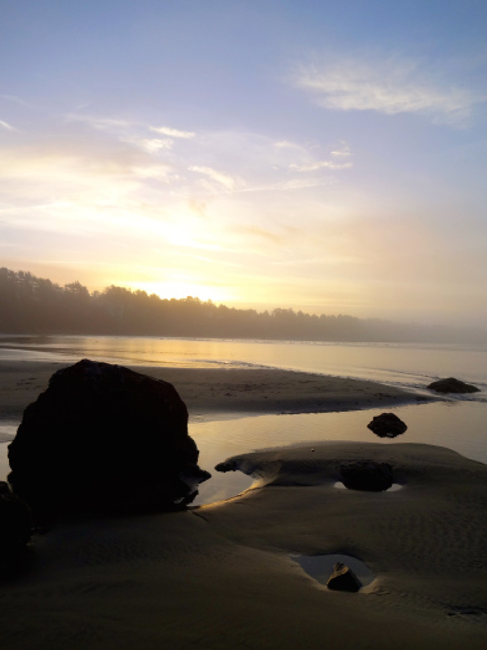 Our first morning out on the beach with lots of fog...we were in heaven!