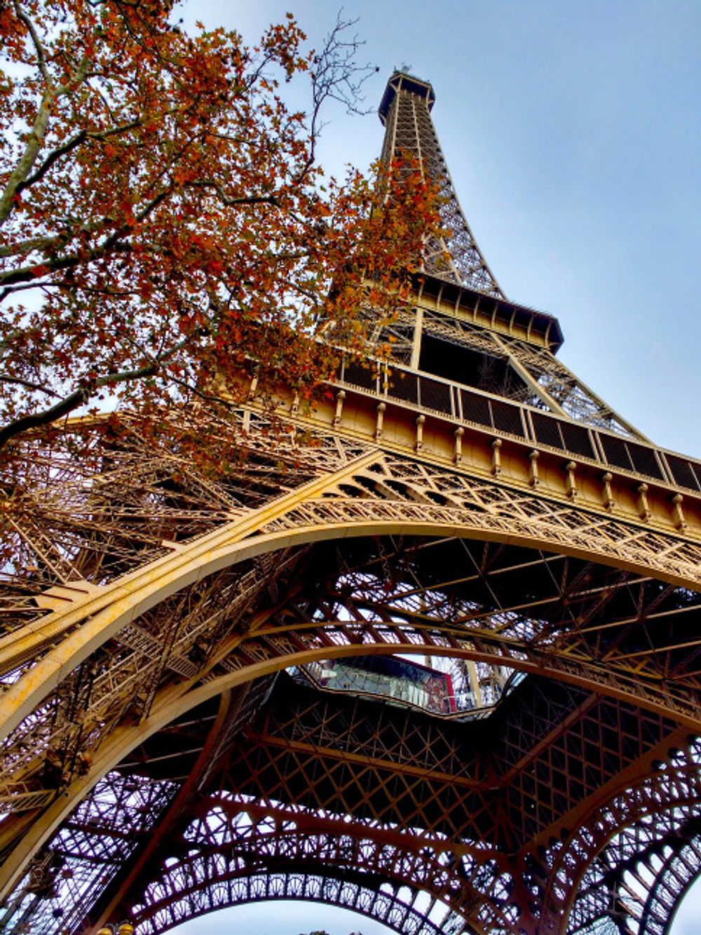 While he'd seen it from afar, on our last day I insisted he see the Eiffel Tower up close. He thanked me twice afterwards - it really is unbelievably huge and an amazing feat of engineering.