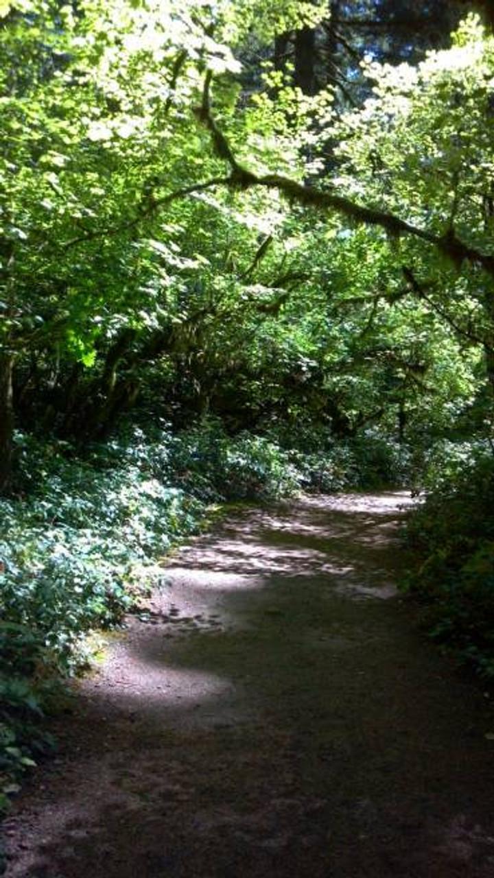 Path2
