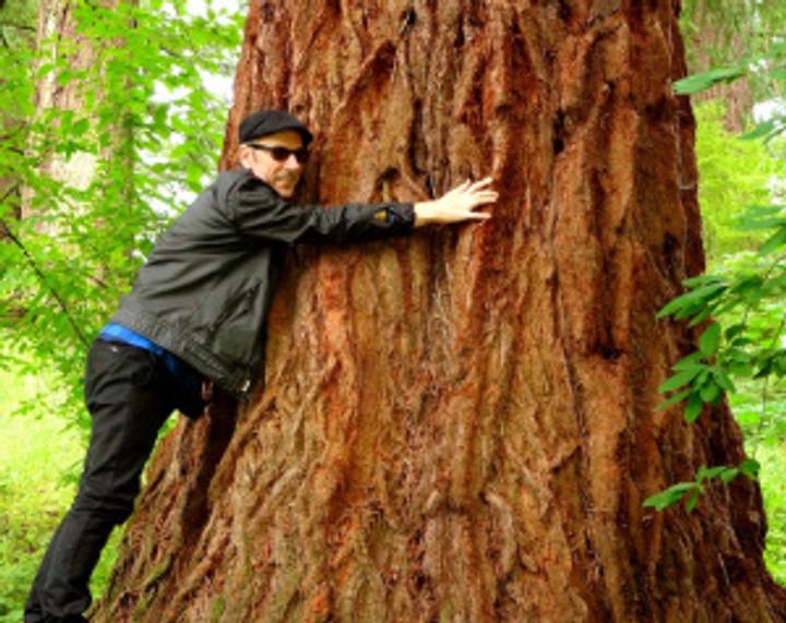 my fella the treehugger (at the Hoyt Arboretum)