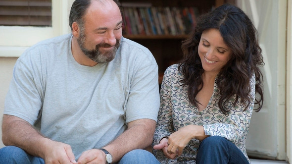 As anticipated, fell madly in love with the understated and incredibly well acted romantic comedy, Enough Said, starring Julia Louis-Dreyfuss and James Gandolfini in his last role before his sudden passing. It was lovely. (source)