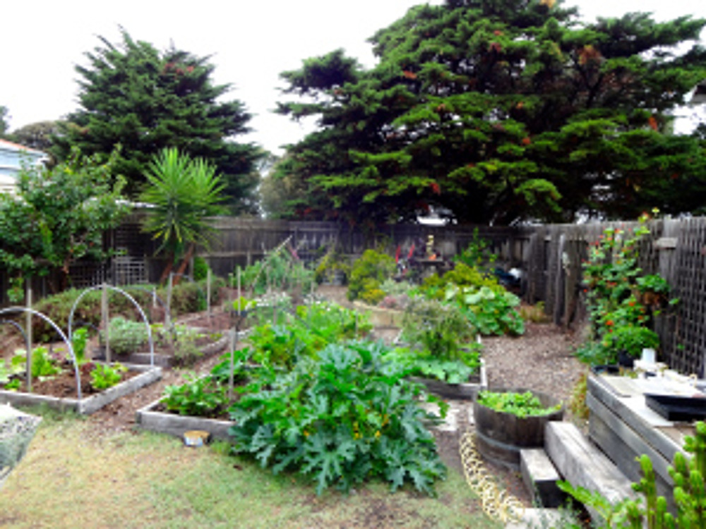 the garden - lovely eh!  i planted peas, spinach, and lettuce yesterday and will be weeding today