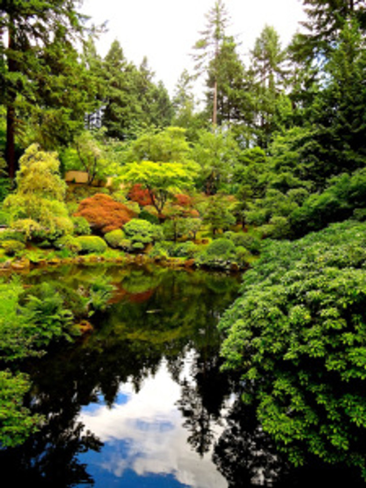 enjoying the peace at the Japanese Gardens