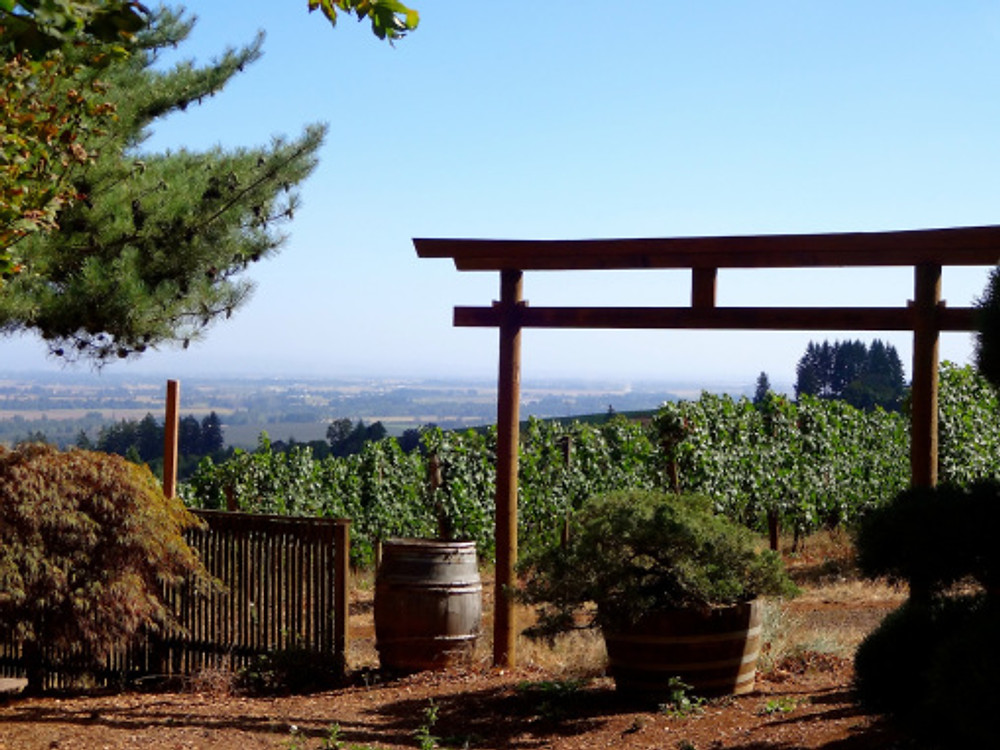 Wine tasting at Torii Mor, the most peaceful of our stops (and had a gorgeous syrah port we took home!)
