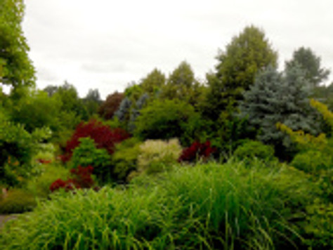 Midweek Getaway: The Oregon Garden