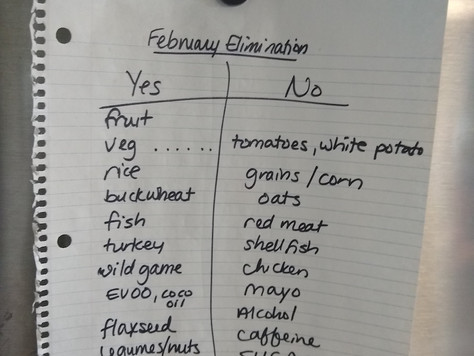 Elimination Diet: My Thoughts, from Meal Planning, to Philosophies, to Sanity Saving Strategies!