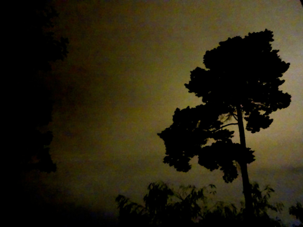nighttime in St Kilda