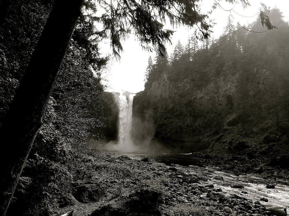 We then drove down to Snoqualmie  and hiked down to get a view of the falls. Arriving there on a weekend meant a zillion tourists to plow through which was a bit annoying, but not as many went all the way down to the final viewing spot so we got a few nice shots. Unfortunately we were dismayed to see how much litter was everywhere! At every viewing point you could look down and see coffee cups and soda cans and other trash, and at the last overlook there was a gnarly old gal chainsmoking and unfriendly. Nothing like walking through a wall of smoke on a small observation deck to see nature. I had great memories of this place when I was in my 20's and unfortunately will probably never come back.