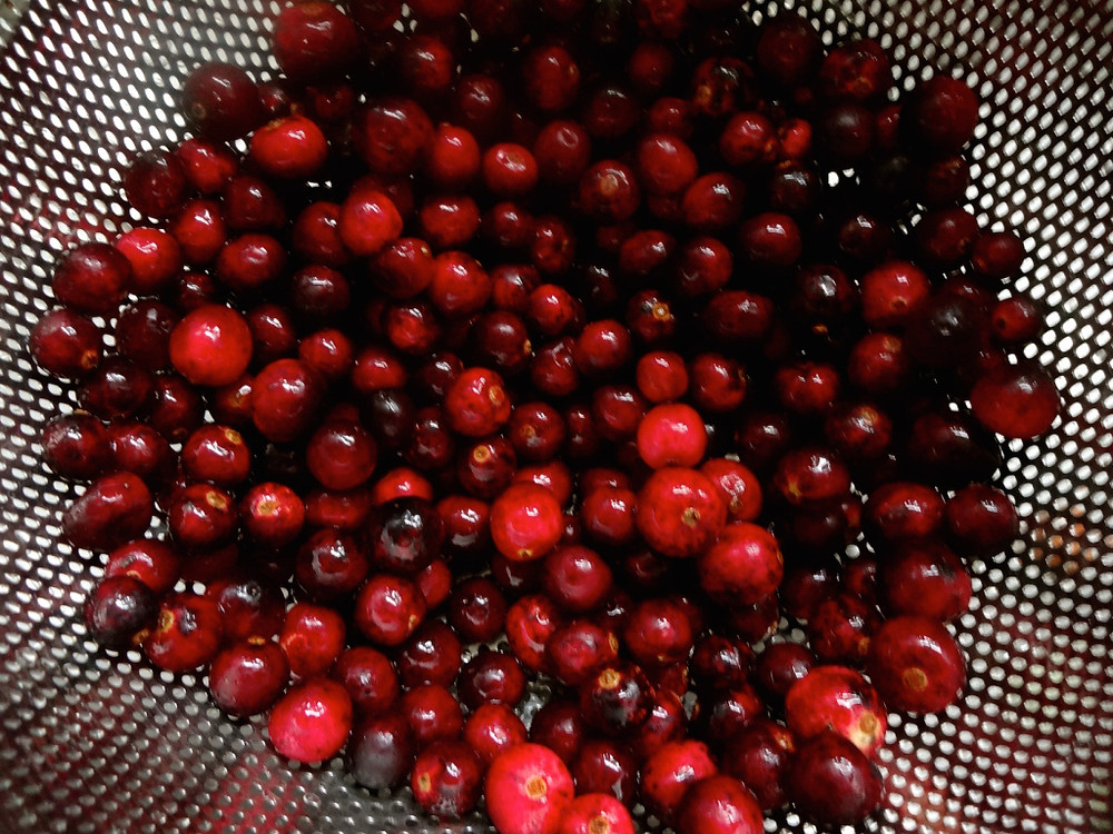 Gorgeous Eagle Organic cranberries grown on the Oregon Coast, used for both the stuffing and a last minute chutney.