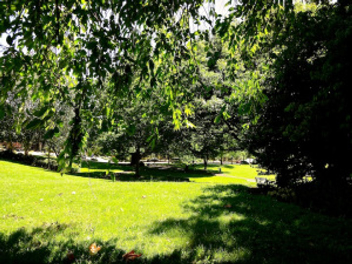 and today as the weather mellowed a bit, we found a shady spot in Cathedral Park for a picnic of fresh fruit, homemade potato salad, vegan pudding, tea & soda, and each other's company :)