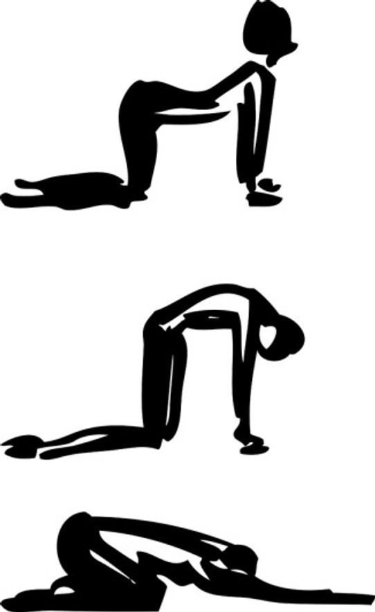 yoga_catcow26078724_m