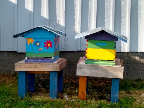 The Bees Are Back in Town…