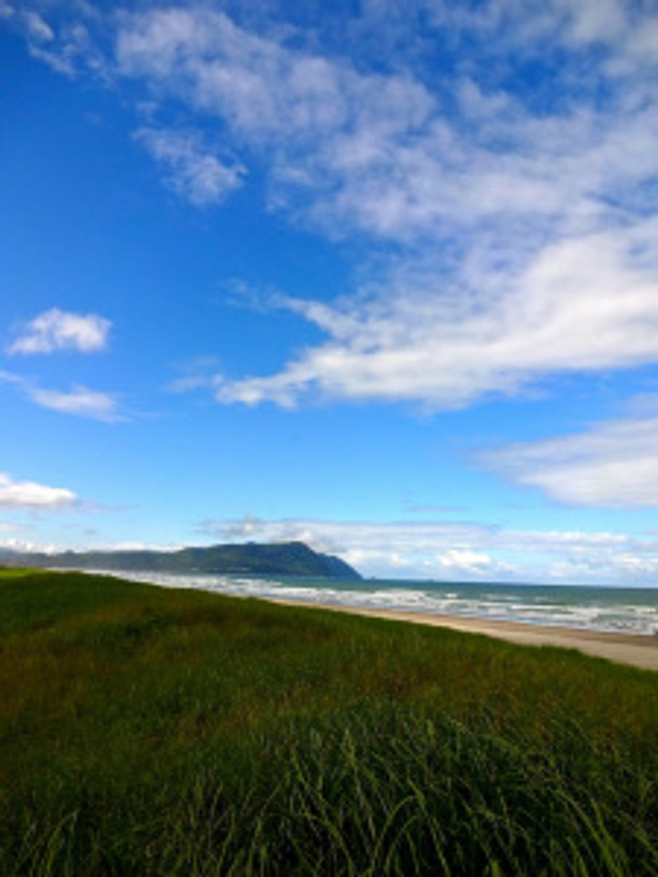 Walking through the seagrass to the beach at Gearhart