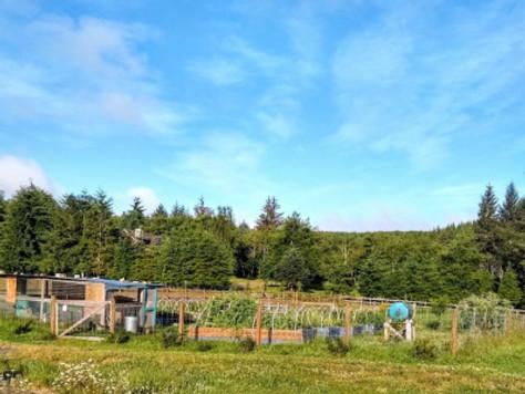 Coastal Gardening: June!