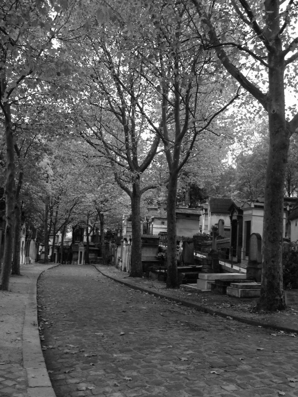 We went to Pere Lachaise on our first day, Dan's only request for the trip. The soles of my feet were still feeling like sharp needles thanks to the meds still leaving my system, but with lots of foot rest breaks we were able to get out there and stroll amongst the trees. No, there are no photos of Jim Morrison's grave. Neither of us cared too much for him and when we happened to see it, we were disgusted at how the gravesite had been littered with fan crap. Think wads of gum and trinkets and plastic crap defacing an otherwise gorgeous cemetery. Shame on Paris for allowing this.