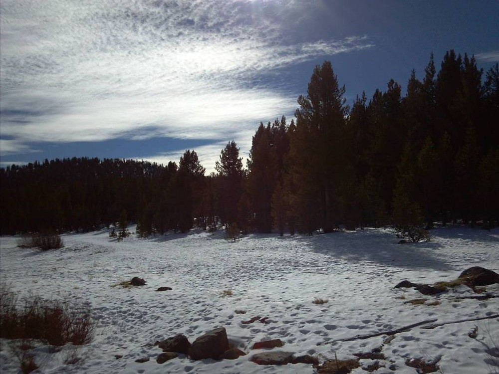 And while there was only patchy snow along the lake, Mt Rose did not disappoint, giving us the chance to play!!!!