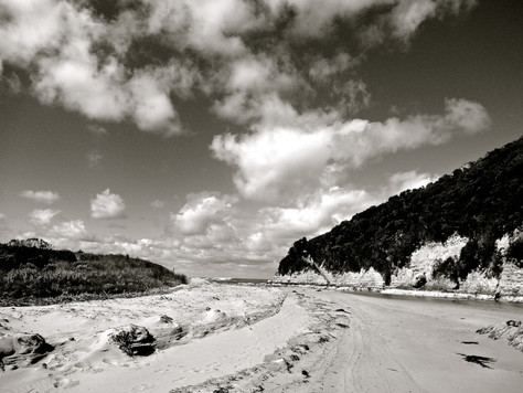 Oz Escape, Part VII: Coastal Black & White