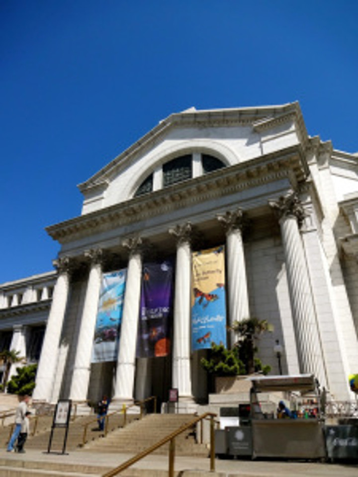 And more importantly for me, the Museum of Natural History.  Hells yeah.