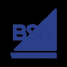 Logo-BSB-Verzekeringen-RGB-Transparant.p
