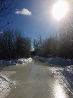 Sunny day at RiverOak