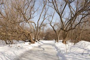 RiverOak's orchard