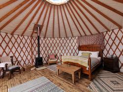 sundew-yurt