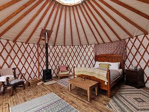 sundew-yurt.jpg