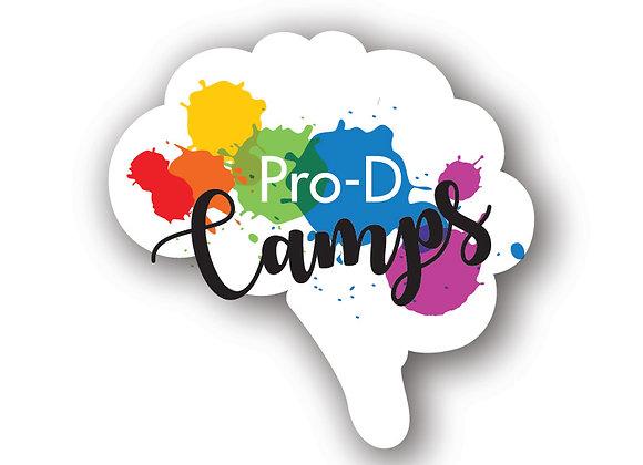 Pro-D Camp