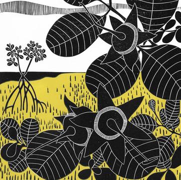 Mangrove Apples II