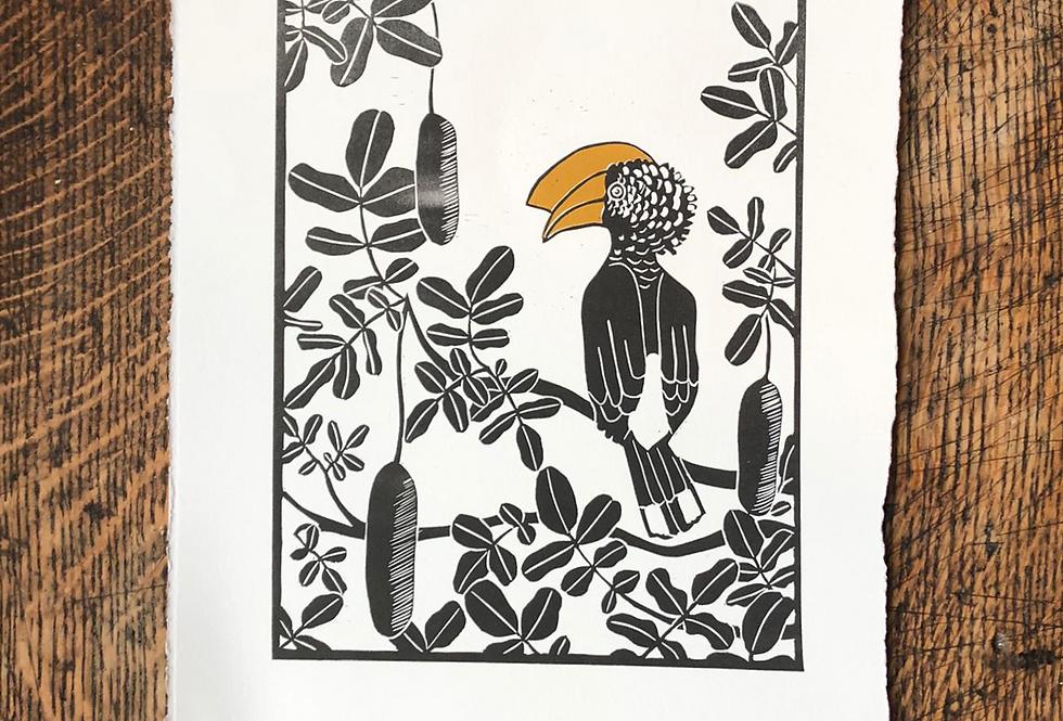 Hornbill & Kigelia Tree