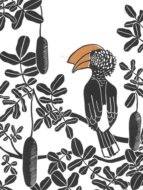 Hornbill and Kigelia
