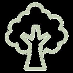 arbre vert .png