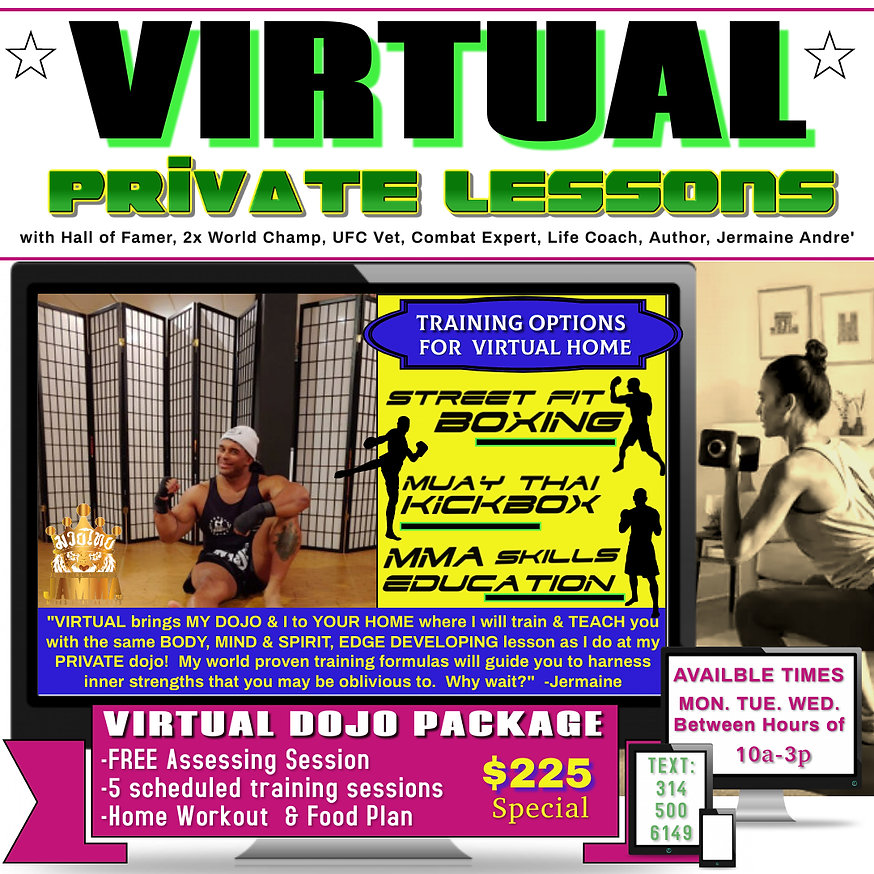 Virtual Private Lesson flier.jpg