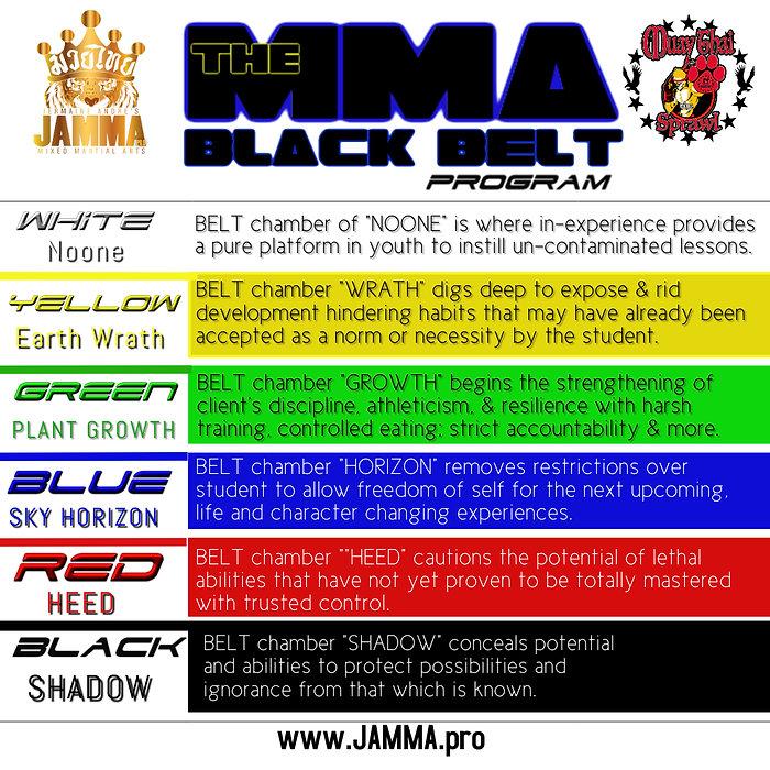 The MMA Black Belt rank descriptions.jpg