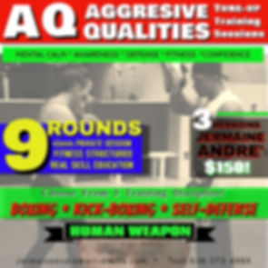 Aggressive Qualities 9 rounds.jpg