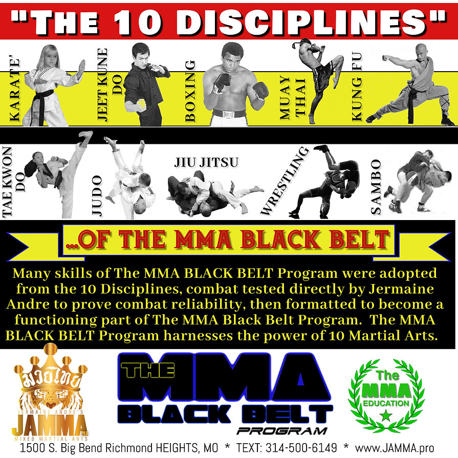 The 10 Disciplines of The MMA BBP.jpg