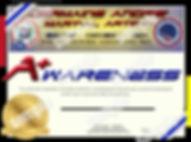 A+ Awareness Certificate sample.jpg