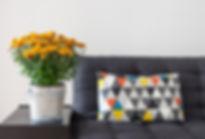 almohadilla de tiro en el sofá