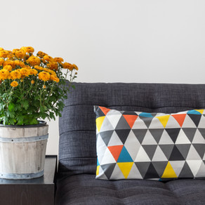 Tips For Staging Your Colorado Home