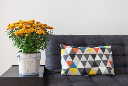 throw travesseiro no sofá