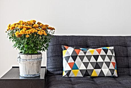throw pillow on sofa